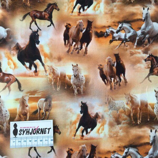 Bomuldsjersey med heste økotex 100